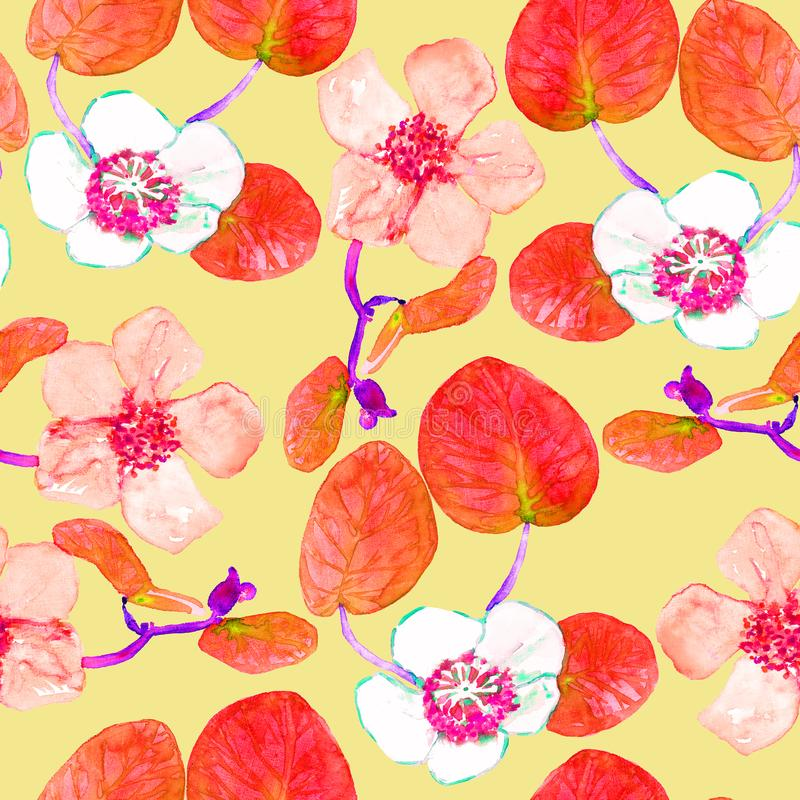Male and female kiwifruits flowers, seamless pattern design in red color palette on soft yellow background stock illustration