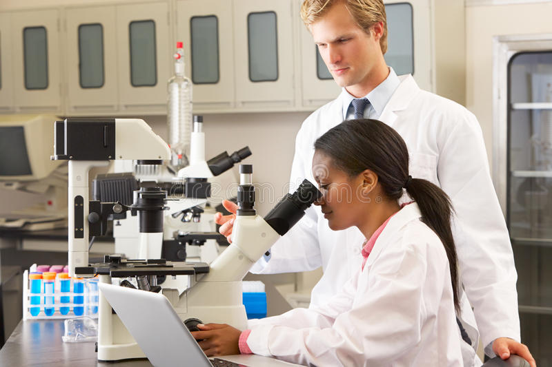 Download Male And Female Scientists Using Microscopes In Laboratory Stock Image - Image: 28852129