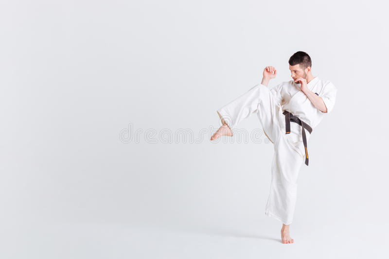 Male fighter in kimono. Posing isolated on a white background stock photography