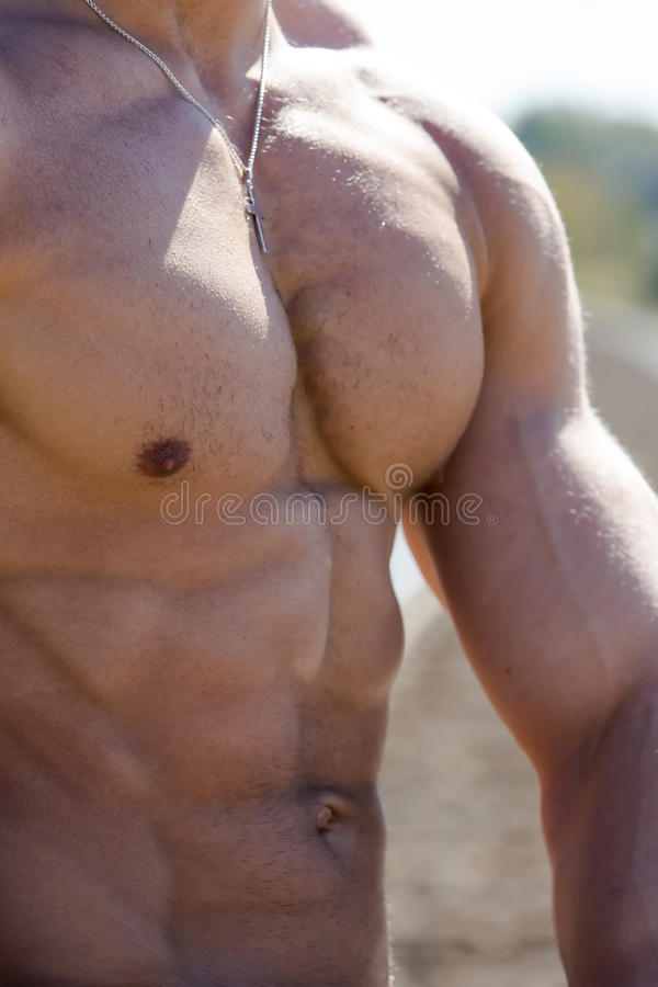Male Fitness Athlete royalty free stock image
