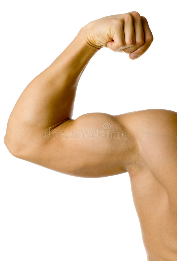 Male flexed arm stock image