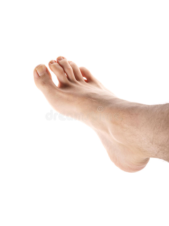 Male foot stock photography