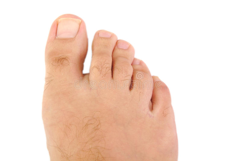 Male foot and toes. Close up of male foot and toes stock images