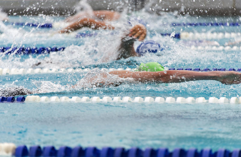 Male freestyle swimmers in a close race stock photo