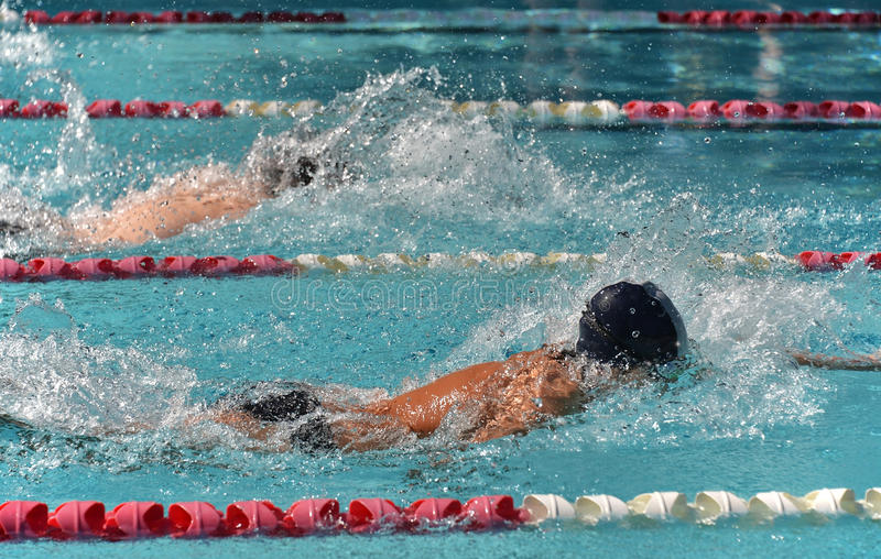 Male freestyle swimmers in a close race royalty free stock photography