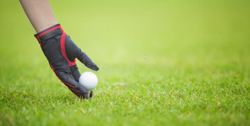 Download Male Golf Player Teeing Off Golf Ball Stock Image - Image: 33131041