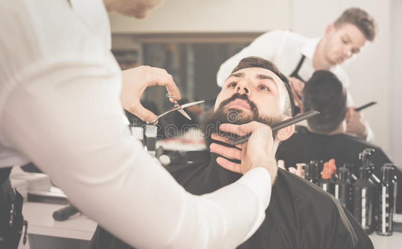 Male hairdresser accurately cutting beard of client. Satisfied pleasant male hairdresser accurately cutting beard of client at hair salon stock photo