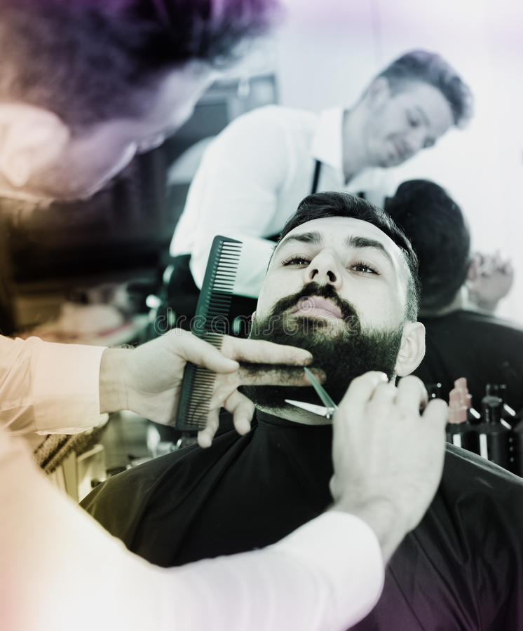 Male hairdresser accurately cutting beard of client. Young male hairdresser accurately cutting beard of client at hair salon stock photography