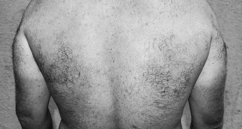 Male hairy back. Black and white photo. stock photo