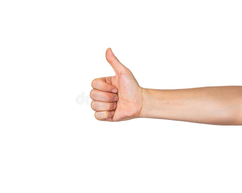 Male hand in fist with open thumb up in Like gesture on white background royalty free stock photos