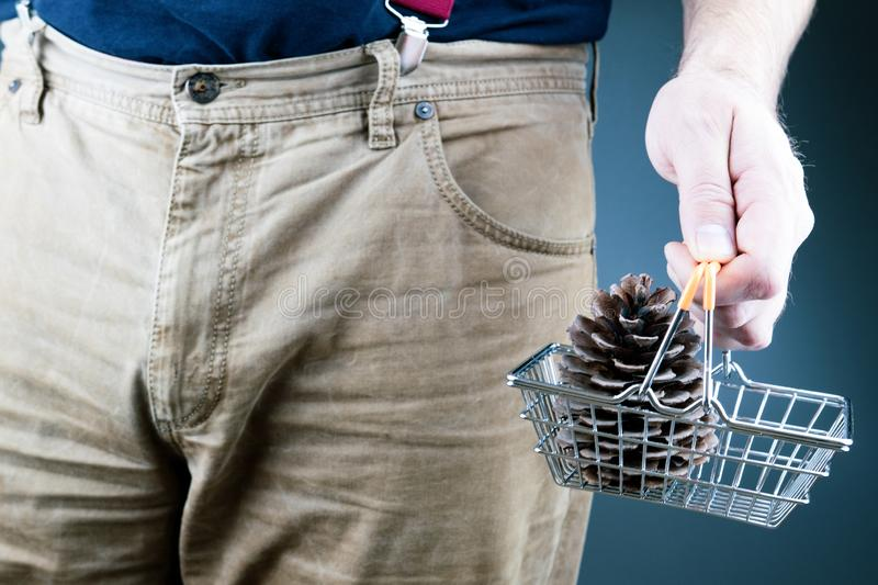 Male hand holds before him the basket from the supermarket with forest. Lump of cedar royalty free stock images