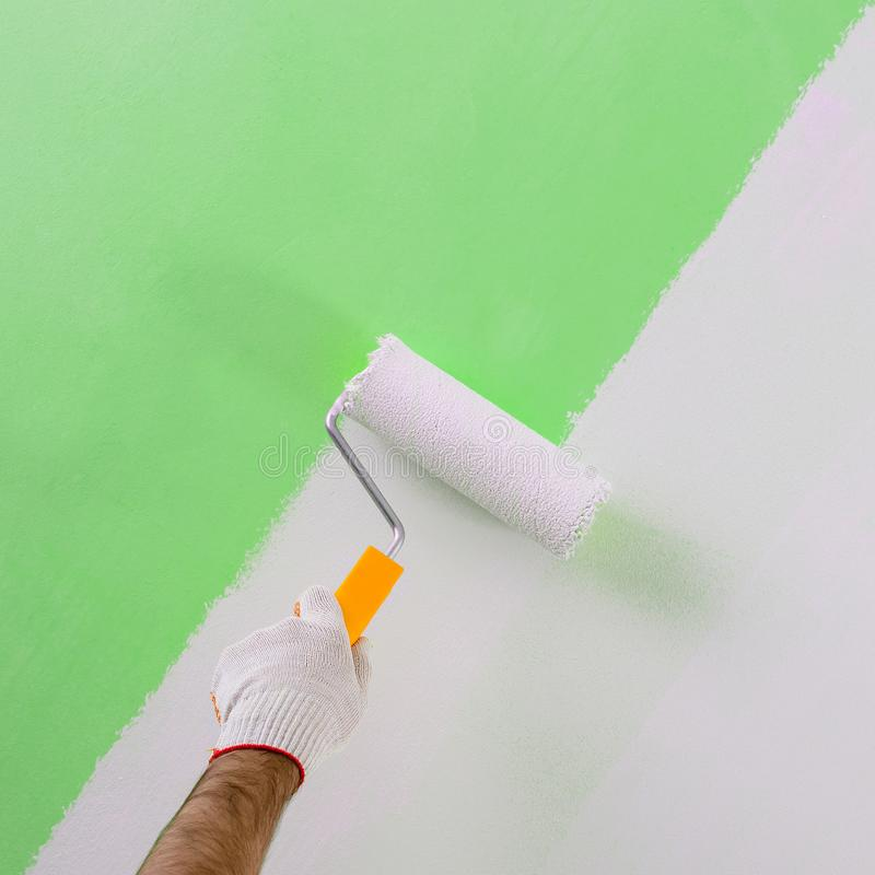 Male hand painting wall with paint roller. Painting new apartment renovating with green color paint stock photo