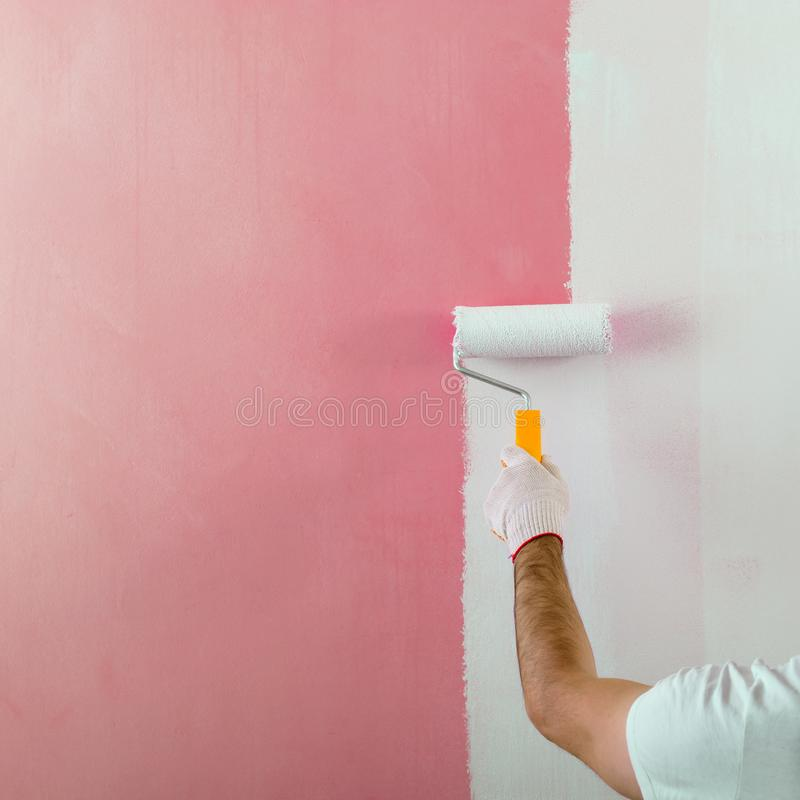 Male hand painting wall with paint roller. Painting new apartment renovating with pink color paint stock images
