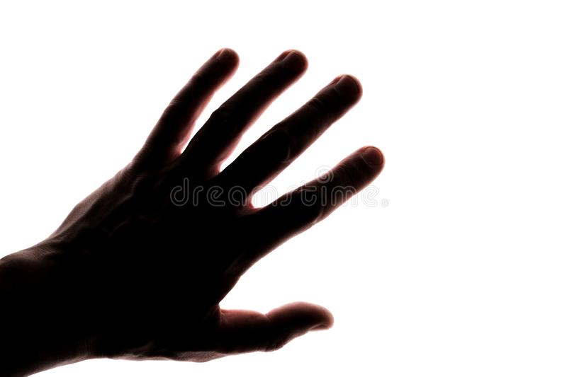 Male hand. Silhouette. White background. Copyspace stock image