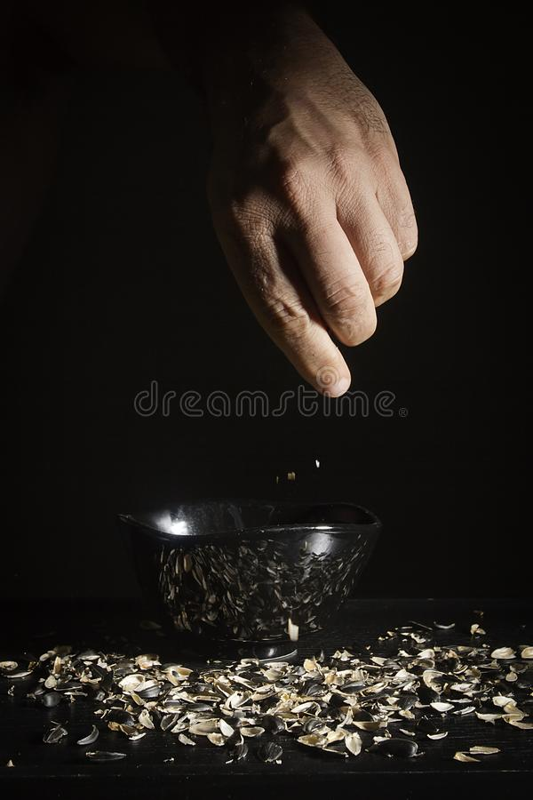 Hand with sunflower husk. Male hand with a sunflower husk on a black background stock image