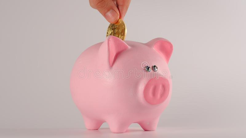 Male hand throws bitcoin into a pink piggy moneybox royalty free stock images