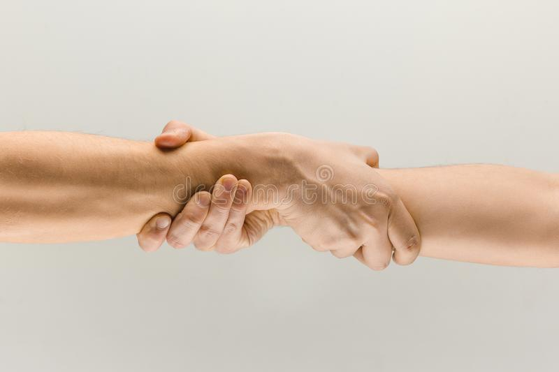 Male hands demonstrating a gesture of holding and strong isolated on gray studio background. Better together. Male hands demonstrating a gesture of holding and stock images
