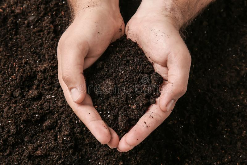 Male hands with soil stock photo