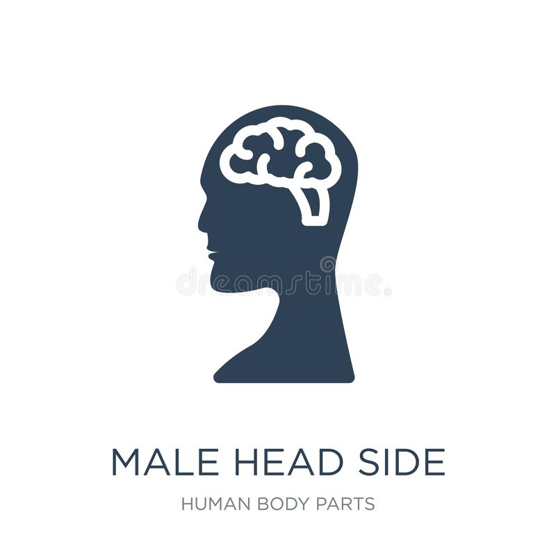 male head side view with brains icon in trendy design style. male head side view with brains icon isolated on white background. royalty free illustration