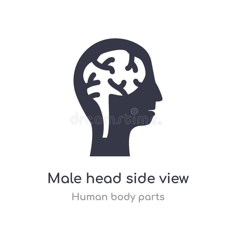 Male head side view with brains outline icon. isolated line vector illustration from human body parts collection. editable thin. Stroke male head side view with vector illustration
