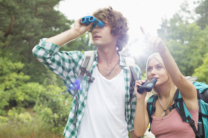 Male hiker using binoculars while woman showing him something in forest stock photo