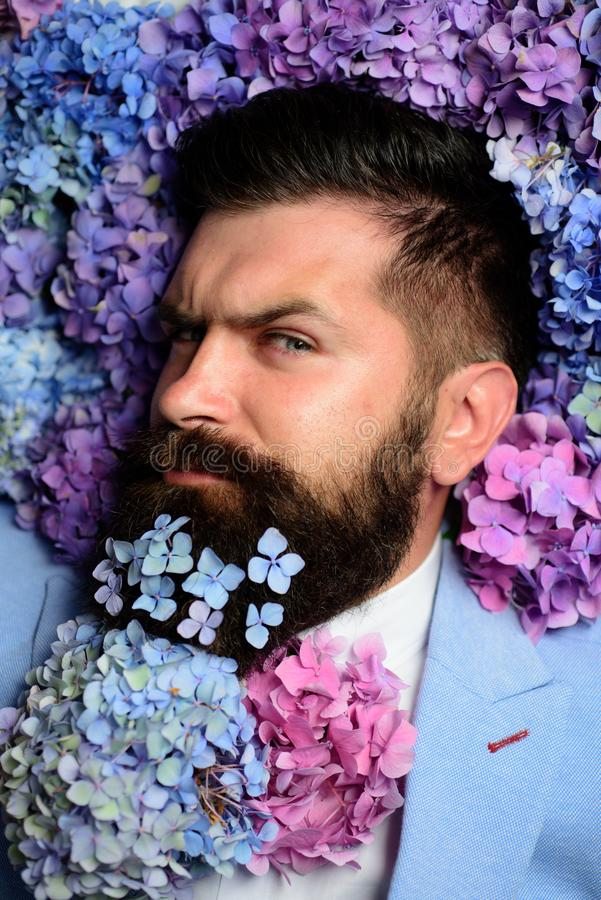 Male with hydrangea flowers. brutal caucasian hipster with moustache. spring. womens day. Mature hipster with beard royalty free stock images