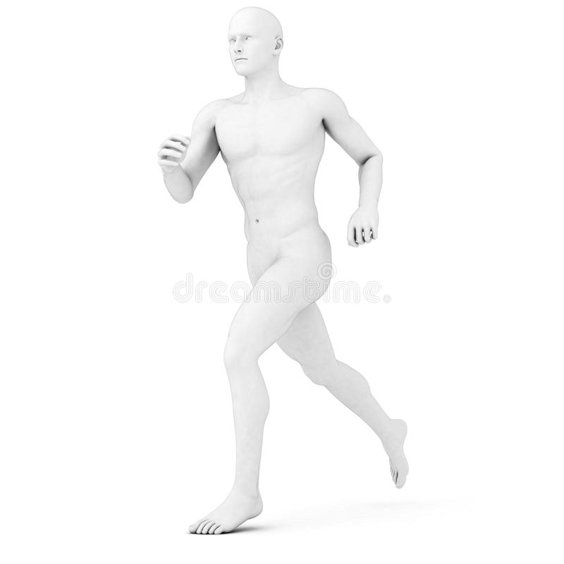 Male jogger - anatomy. 3d rendered illustration of a male jogger in grey stock illustration