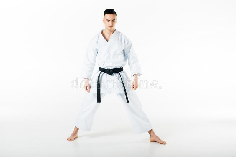 Male karate fighter with black belt standing with closed eyes. Isolated on white stock photos