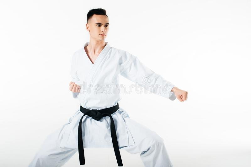 Male karate fighter exercising isolated. On white royalty free stock photography