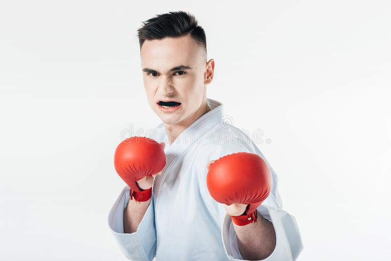 Male karate fighter with gloves and mouthguard. Isolated on white royalty free stock image