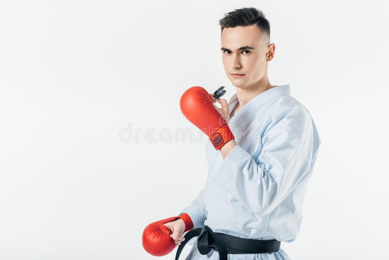 Male karate fighter holding mouthguard and looking at camera. Isolated on white stock photos