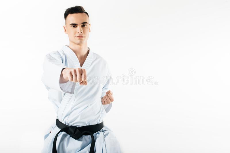 Male karate fighter performing hit and looking at camera. Isolated on white royalty free stock image