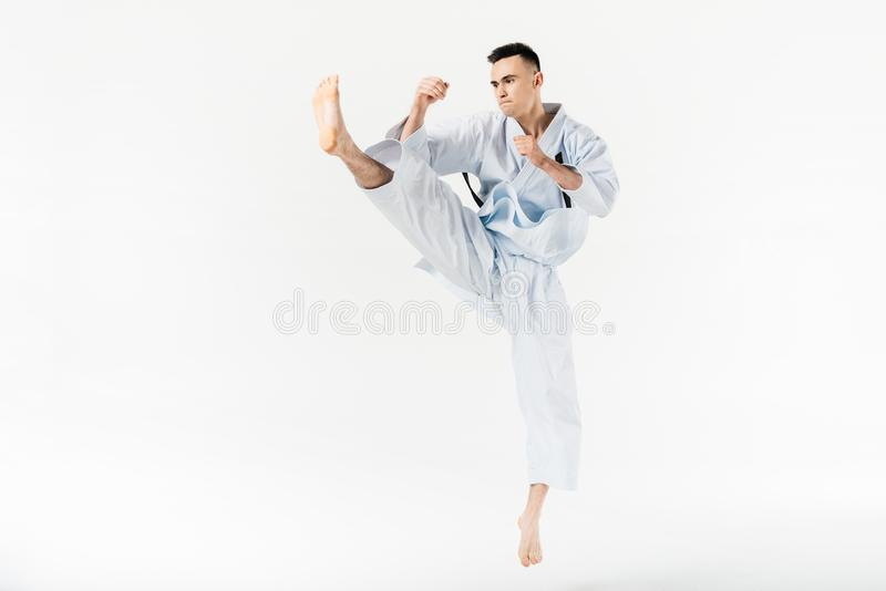 Male karate fighter performing kick. Isolated on white royalty free stock images