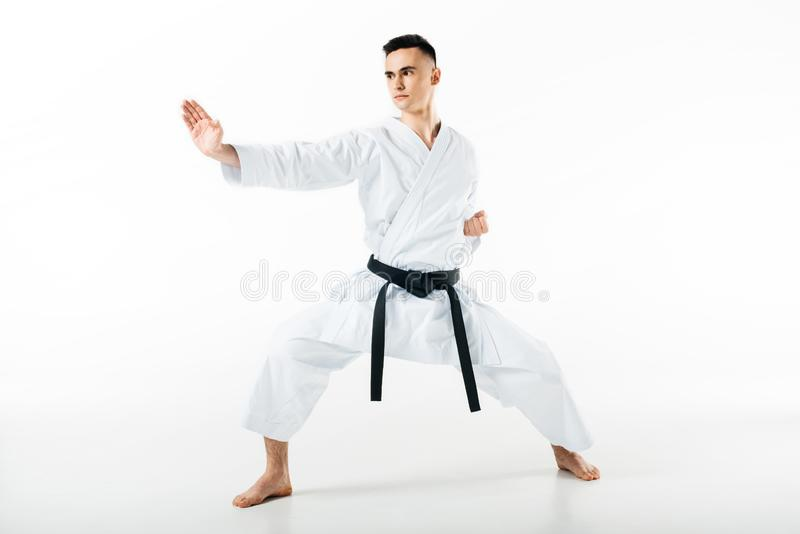 Male karate fighter standing in pose. Isolated on white stock photo