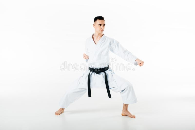 Male karate fighter training isolated. On white royalty free stock photos
