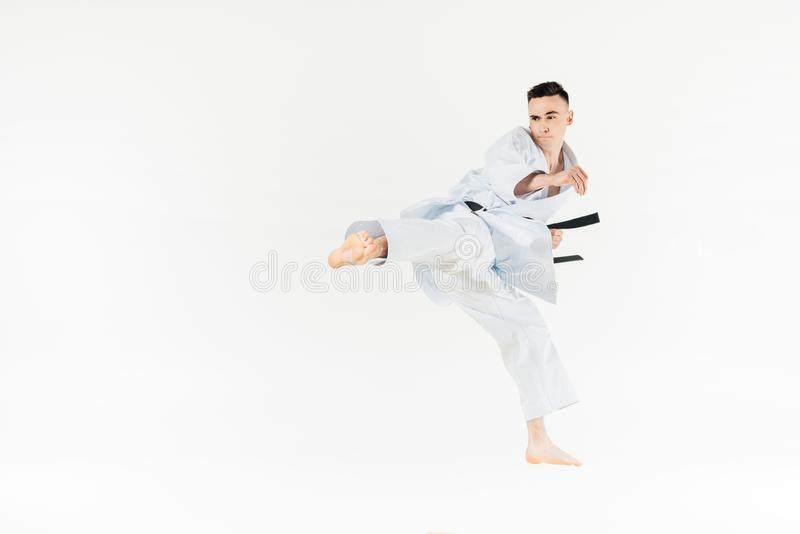 Male karate fighter training isolated. On white royalty free stock photography