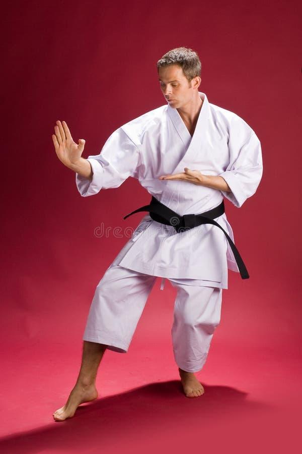 Male Karate Instructor. A male black belt karate instructor posing stock photography