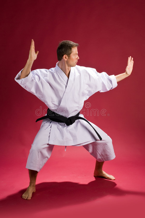 Male in karate kimono. A karate kimono wearing a black belt(level), in a striking pose on a red background royalty free stock photos