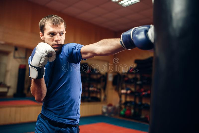Male kickboxer hits the punching bag in gym stock photo