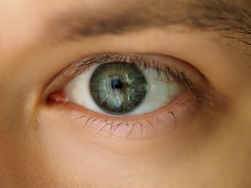 Male left emerald green coloured eye. Extreme closeup. Oculist and perfect vision, contact lens concept stock images