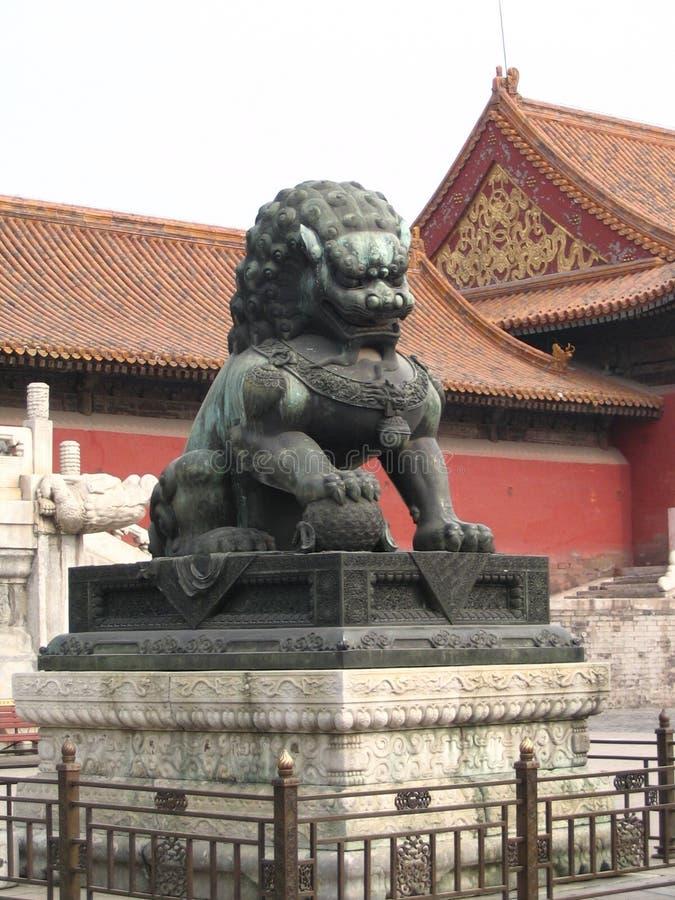Male Lion (China) Stock Image