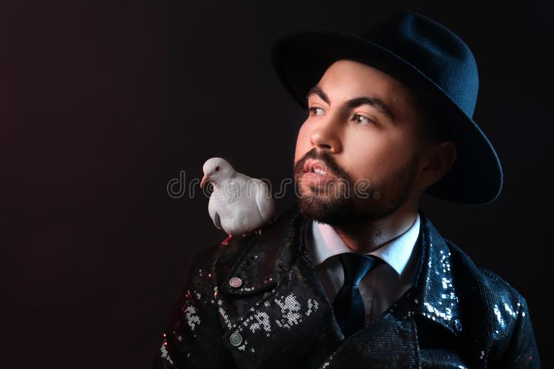 Male magician with white pigeon on dark background stock photo