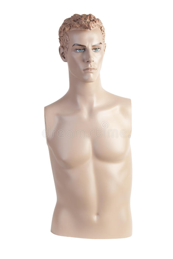 Free Male Mannequin Torso | Studio Isolated Royalty Free Stock Image - 15568646