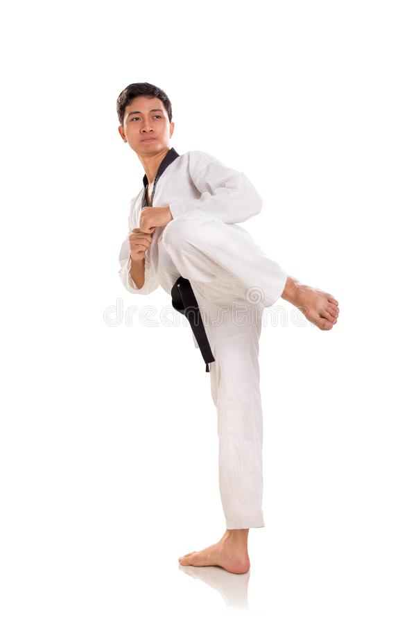 Male martial artist ready to kick, full length shot. Male martial artist in his stance ready to throw left kick, full length shot isolated on white background stock photo