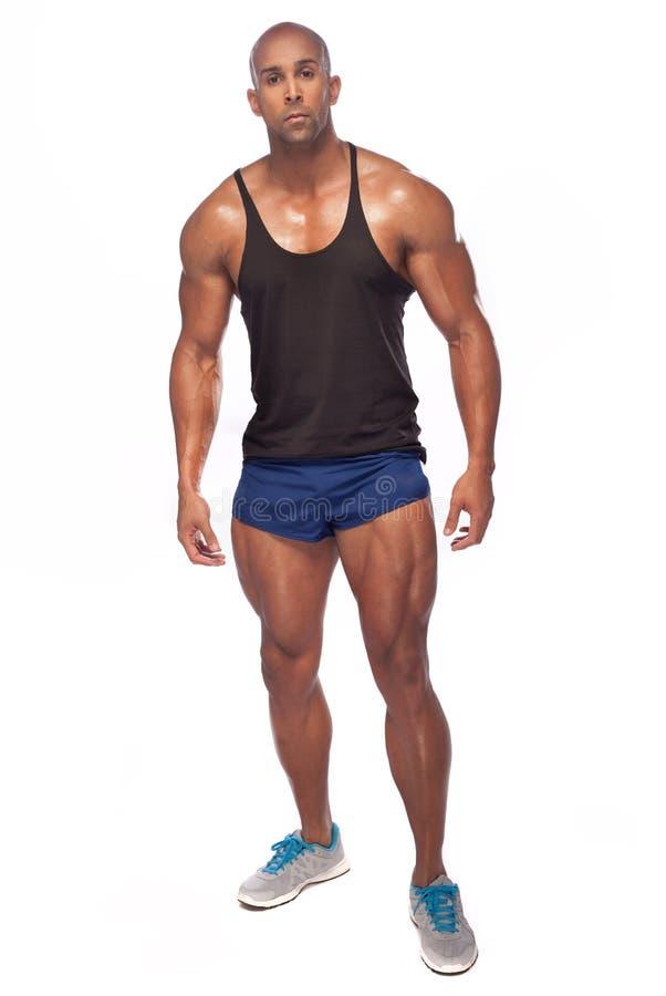male model muskulöst royaltyfri bild
