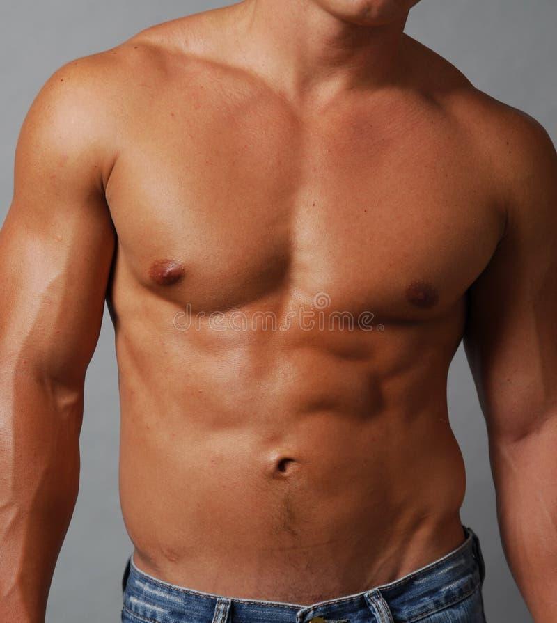 male muskulöst shirtless för magebröstkorg arkivfoton