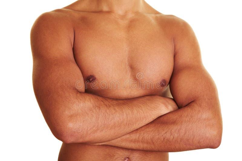 male naken upper för huvuddel arkivfoton