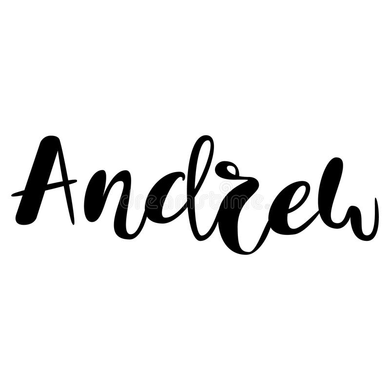 male name andrew lettering design handwritten typography ve stock vector illustration of