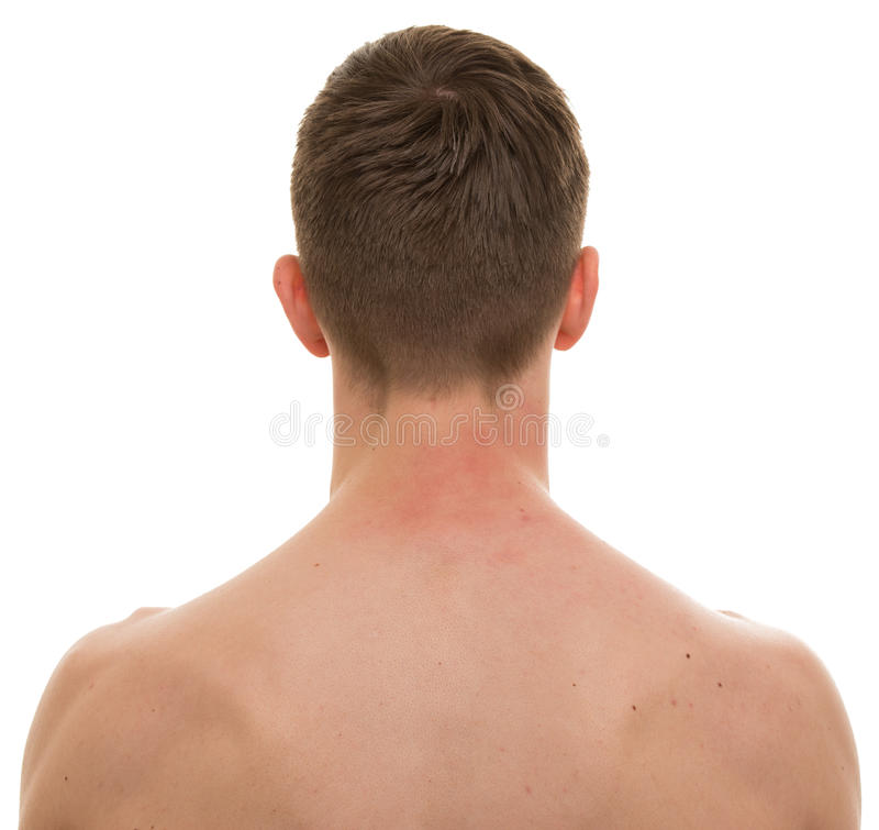 Male Neck Back Isolated On White - REAL Anatomy Stock Photo - Image ...