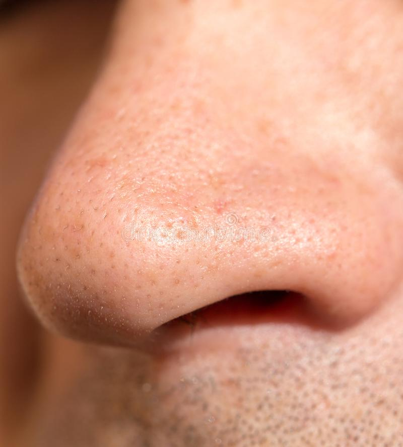 Male nose. close royalty free stock photography